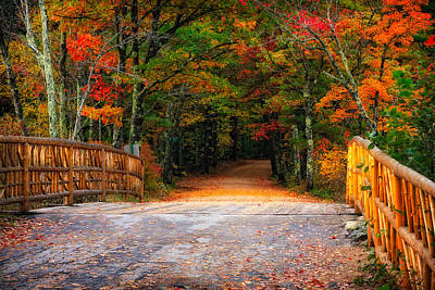 Cedar Fence Photograph - Autumn Road by Jeff Sinon