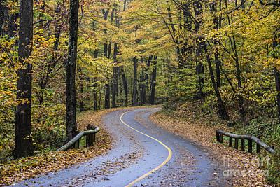 Ashford Photograph - Autumn Road by John Greim