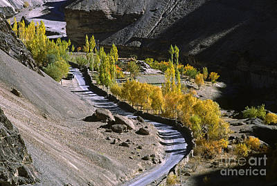 Photograph - Autumn Road Ladakh by Craig Lovell