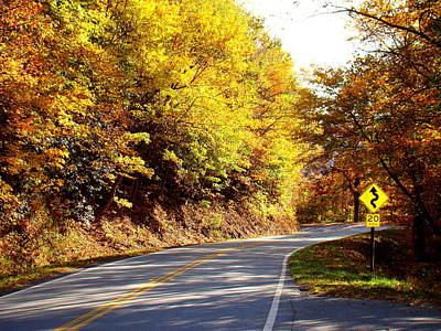 Smokey Mountain Drive Photograph - Autumn Road by Mary Koval