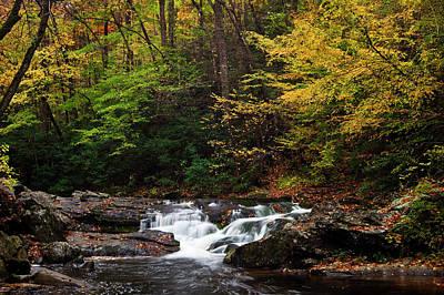 Little River Photograph - Autumn Rush by Andrew Soundarajan
