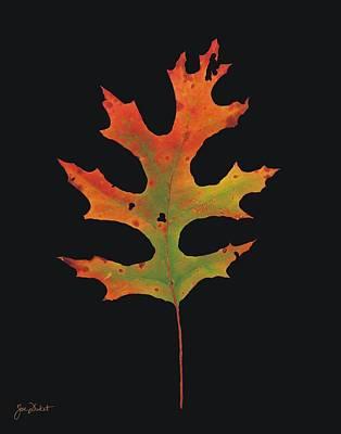 Photograph - Autumn Scarlet Oak Leaf by Joe Duket