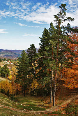 Photograph - Autumn Scene IIi by Bogdan M Nicolae