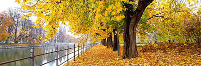 Yellow Trees Photograph - Autumn Scene Munich Germany by Panoramic Images