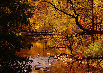 Photograph - Autumn Scene by Raymond Salani III