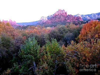 Photograph - Autumn Sedona by Marlene Rose Besso