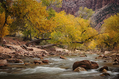 Zion National Park Photograph - Autumn Serenity by Andrew Soundarajan