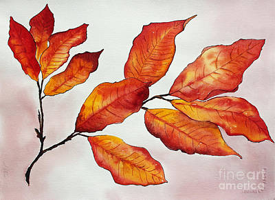 Painted Details Drawing - Autumn by Shannan Peters