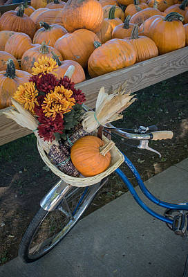 Art Print featuring the photograph Autumn Shopping by Wayne Meyer
