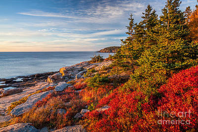 Photograph - Autumn Shore In Acadia by Susan Cole Kelly