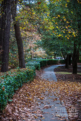 Photograph - Autumn Side Walk by Dale Powell