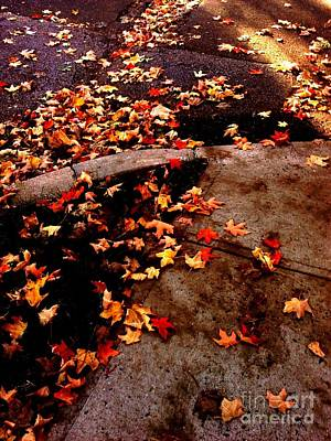 Photograph - Autumn Sidewalk by Miriam Danar