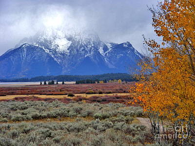 Marilyn Photograph - Autumn Snow In The Tetons by Marilyn Smith