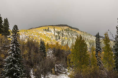 Photograph - Autumn Snow On Vail Pass - Vail Colorado by Brian Harig