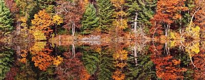 Photograph - Autumn Sonata by Leda Robertson