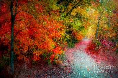Photograph - Autumn Splendor by Tara Turner