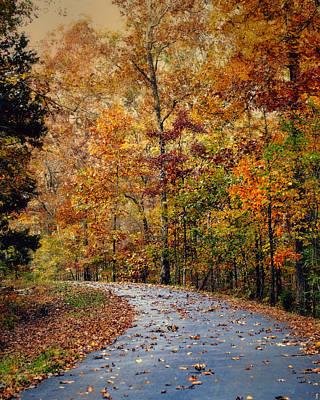 Autumn Scene Photograph - Autumn Splash - Fall Landscape by Jai Johnson