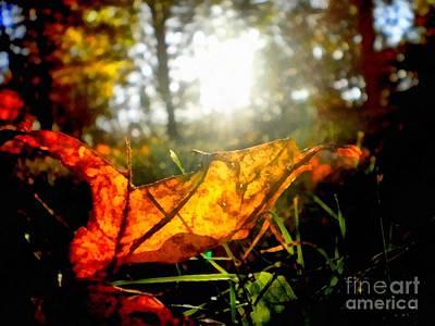 Autumn Splendor Art Print by Janine Riley