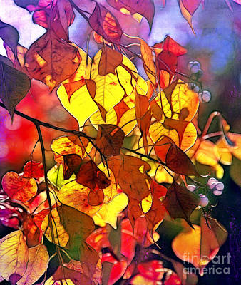 Photograph - Autumn Splendor by Judi Bagwell