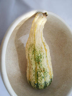 Photograph - Autumn Squash In Cool Tones by Louise Kumpf