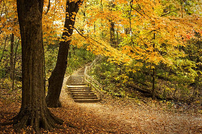 Leaves Photograph - Autumn Stairs by Scott Norris