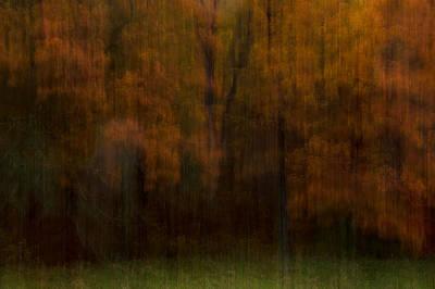 Photograph - Autumn Streak by Ryan Heffron