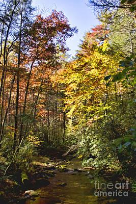 Photograph - Autumn Stream by Crystal Nederman