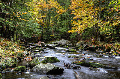 New Hampshire Photograph - Autumn Stream by Donna Doherty