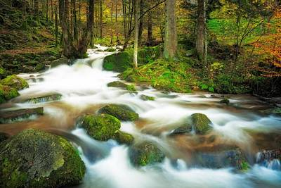 Art Print featuring the photograph Autumn Stream by Maciej Markiewicz