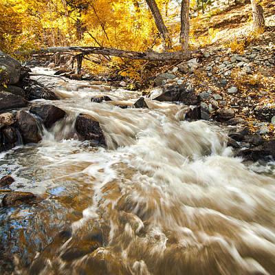 Photograph - Autumn Stream Under The Golden Birch Trees Fine Art Photograph Print by Jerry Cowart