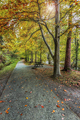 Photograph - Autumn Stroll by Ian Mitchell