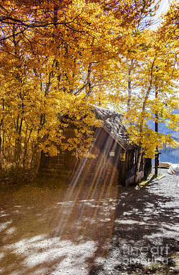 Boat Photograph - Autumn Sun Rays On Boat House Fine Art Photograph Print by Jerry Cowart