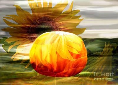 Photograph - Autumn Sunflower And Pumpkin by Annie Zeno