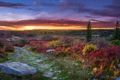 Photograph - Autumn Sunset At Dolly Sods by Mary Almond