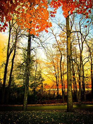 Autumn Sunset  Art Print by Sara Frank