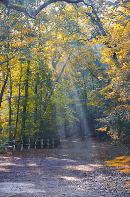 Valley Photograph - Autumn Sunshine by Bill Cannon