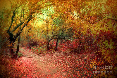 Photograph - Autumn Surrender by Tara Turner