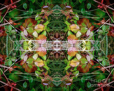 Photograph - Autumn Symmetry by David Hargreaves