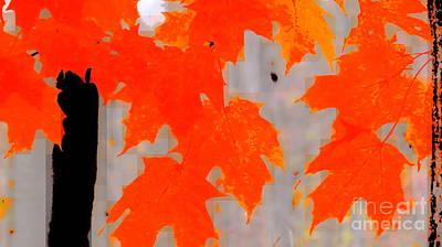Photograph - Autumn Talk by France Laliberte