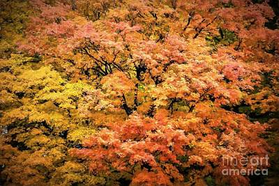 Wall Hanging Quilt Photograph - Autumn Tapestry by Henry Kowalski