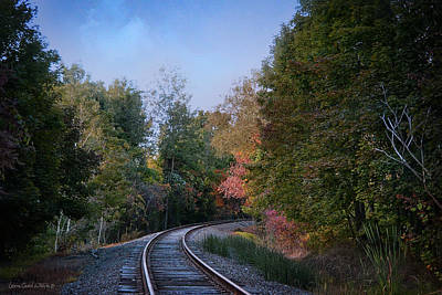 Photograph - Autumn Tracks In Pennsylvania by Lena Wilhite