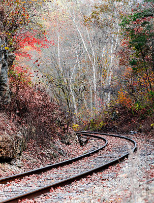 Photograph - Autumn Tracks by Mary Carol Story