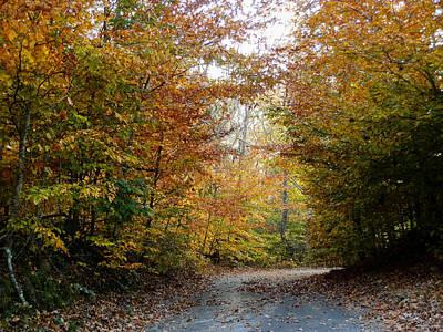Photograph - Autumn Trail by Heather Sylvia