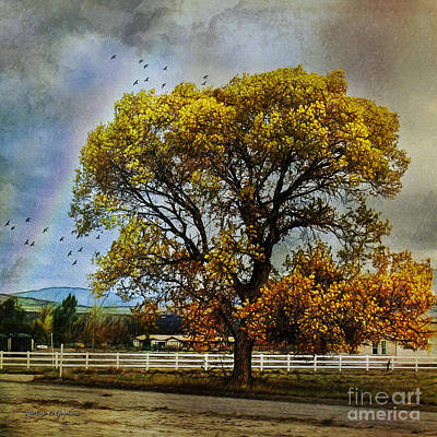 Autumn Tree In Anza Art Print by Rhonda Strickland