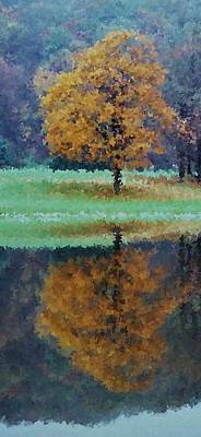Photograph - Autumn Tree Reflecting by Diane Alexander