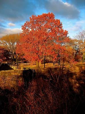 Edward Hopper - Autumn Tree by Ydania Ogando