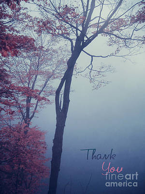 Photograph - Autumn Trees In The Mist - Thank You Card by Aimelle