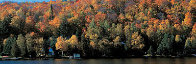 Colors Of Quebec Photograph - Autumn Trees Laurentide Quebec Canada by Panoramic Images