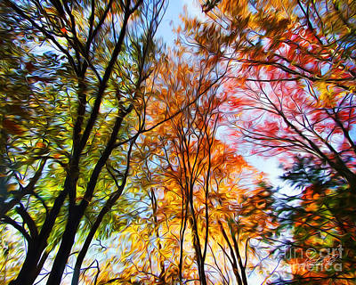 Photograph - Autumn Trees Photo Manipulation by Kristen Fox