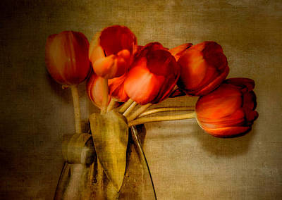 Autumn Tulips Art Print by Julie Palencia